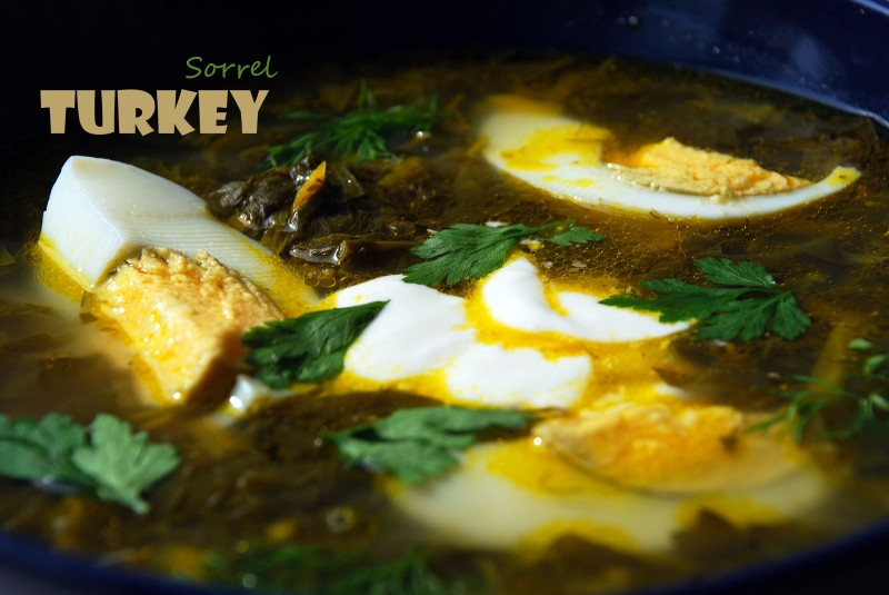 Turkey Sorrel Soup 2TS